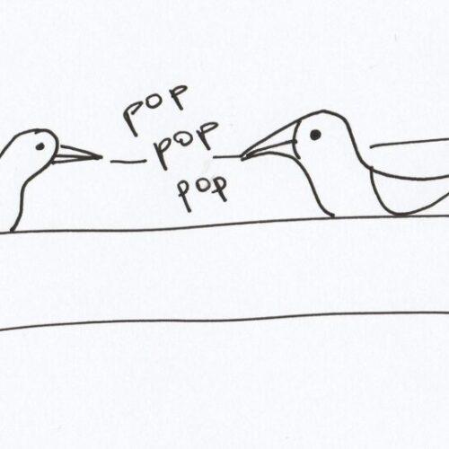 Gaviotas_pop pop pop